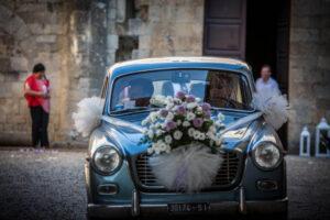 strelitzia piante e fiori decorazione matrimoni visit colledivaldelsa