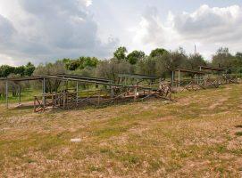 Parco Archeologico di Dometaia accesso esterno tombe visit Colle di Val dElsa borgo medievale Toscana